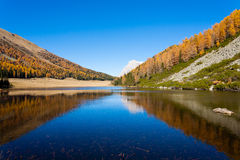 Reflections on water, autumn panorama from mountain lake Stock Photos
