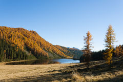 Reflections on water, autumn panorama from mountain lake Royalty Free Stock Image