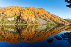 Reflections on water, autumn panorama from mountain lake Royalty Free Stock Photography
