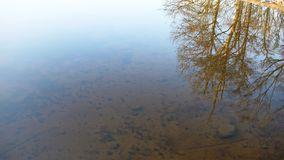 Winter lake reflection. Reflections in the water, Lough Key, Roscommon Royalty Free Stock Photography