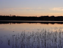Reflections in the water at midsummer night Royalty Free Stock Photos