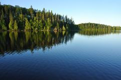 Reflections on a Wilderness Lake. Reflections on the Coniferous Forest on a Wilderness Lake Stock Photography