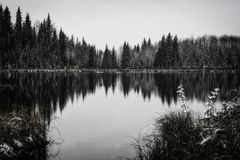 Reflections. Winter day with trees perfectly reflected in a large pond stock photography