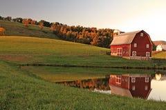 Reflective Barn Stock Image Stock Image