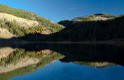 Reflective Lake. A reflective Mountain lake in Colorado Royalty Free Stock Image