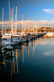 Reflective Marina Stock Photo