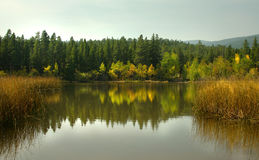 Reflective Mountain Lake. An Autumn forest reflected in the Lake Stock Photo