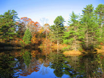 Reflective Pond, Maine. On a quiet back road, this small pond reflects trees and beautiful blue sky in Autumn Stock Image