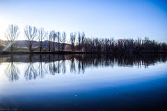 Reflective Pond. Reflections of bare trees at Chatfield Reservoir with mountains in the background stock photography