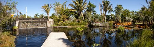 Reflective pond with water lilies and plants at the Naples Botan. Naples, Florida, USA – March 4, 2018: Reflective pond with water lilies and plants at the Royalty Free Stock Images