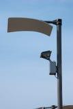 Reflective street lamp Stock Image