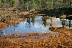 Reflective tarn Royalty Free Stock Images