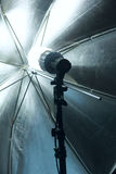 Reflector umbrella Royalty Free Stock Photos