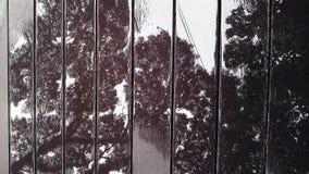 Refleje en piso de madera con agua foto de archivo libre de regalías