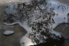 Refleje en un mejor cielo fotografía de archivo