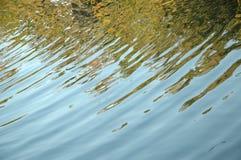 reflektera Arkivbild