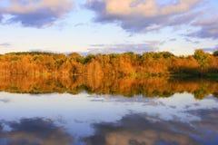 reflektera för lake Royaltyfria Foton