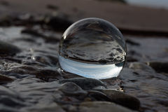 Reflektera i kristallkula Royaltyfri Foto