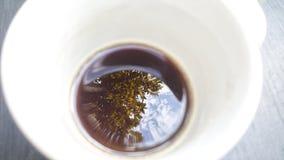reflektera kaffe fotografering för bildbyråer