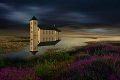 reflekterad natur Arkivfoto