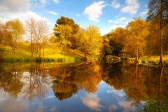reflekterad natur Royaltyfria Foton