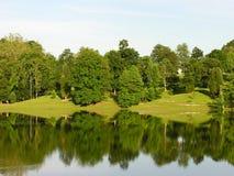 reflekterade trees Royaltyfri Bild