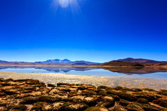 reflekterande lake Arkivbilder