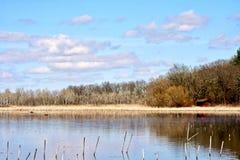 Reflekterande sjö och marsklan med gräs, vasser och träd i bakgrund Blå himmel med över huvudet moln Royaltyfria Bilder