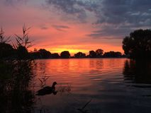 Reflekterande soluppgång Royaltyfri Foto