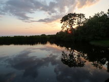 reflekterande vatten Arkivbilder