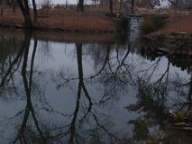 Reflektieren mit Wasser Lizenzfreies Stockbild