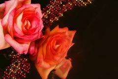 Reflektierende Rose Lizenzfreie Stockfotografie