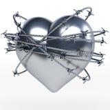Reflektierender Stahl, Metallherz umgeben durch glänzendes barbwire Stockfotografie