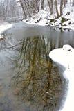 Reflektierender Teich Stockbild