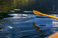Refletido no Sognefjord Fotografia de Stock Royalty Free