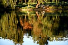 Refletion van het water royalty-vrije stock afbeelding