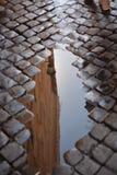 reflexão Foto de Stock Royalty Free