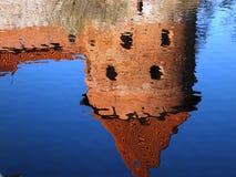 reflexão Imagens de Stock