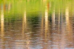 Reflexão abstrata das árvores do outono na água Foto de Stock Royalty Free