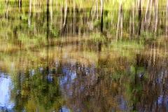 Reflexão abstrata das árvores na água Imagens de Stock Royalty Free