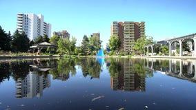 Reflexão bonita da lagoa de Denver Botanic Gardens video estoque