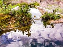 Reflexão bonita do céu azul e das nuvens na água Foto de Stock