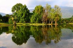 Reflexão bonita no lago Taiping Fotos de Stock Royalty Free