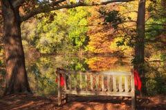 Reflexão colorida da folhagem de outono em um lago imagens de stock royalty free