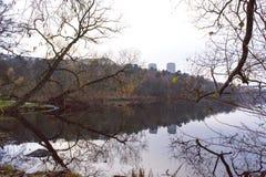 Reflexão colorida da paisagem do outono no lago calmo fotografia de stock