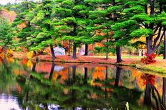 Reflexão colorida das árvores na água Imagem de Stock Royalty Free