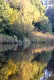 Reflexão da água Fotografia de Stock