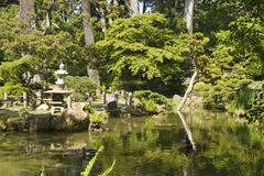 Reflexão da água do jardim de chá foto de stock