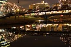 Reflexão da arquitectura da cidade Foto de Stock Royalty Free