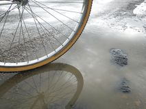 Reflexão da bicicleta Foto de Stock Royalty Free